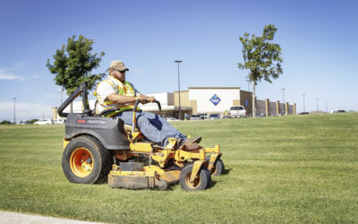 Maintaining Landscaping in Late Summer